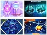 Active Receptor Neuron PowerPoint Templates Bundle, TheTemplateWizard