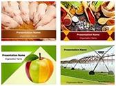 Farming PowerPoint Templates bundle, TheTemplateWizard