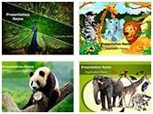 Zoology PowerPoint Templates Bundle, TheTemplateWizard