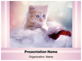 Christmas Kitten PowerPoint Template, TheTemplateWizard