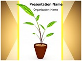 Growing Plant PowerPoint Template, TheTemplateWizard