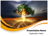 Lighting Tree Template Combo Offer PPT 6 Slides and Word 3 Pages, thetemplatewizard