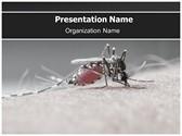 Malaria Free PowerPoint Template, TheTemplateWizard
