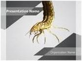Water Larva PowerPoint Template, TheTemplateWizard