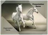 White Horses PowerPoint Template, TheTemplateWizard