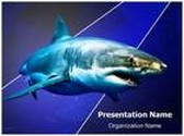 White Shark PowerPoint Template, TheTemplateWizard