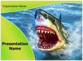 White Shark Teeth PowerPoint Template, TheTemplateWizard