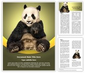 Wwf Word Template, TheTemplateWizard