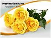 Yellow Rose PowerPoint Template, TheTemplateWizard